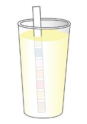 Quick Urine Strips - postup měření 1