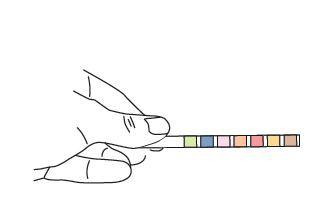 Quick Urine Strips - postup měření 2